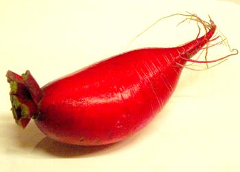 紅化粧大根1個.jpg